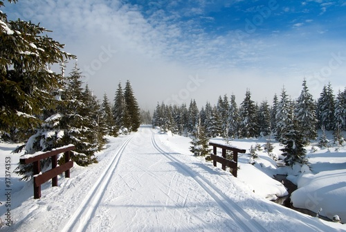 scenery with modified cross country skiing way
