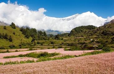view from annapurna himal to dhaulagiri hima