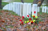 Headstones in Arlington National Cemetery in Washington DC poster