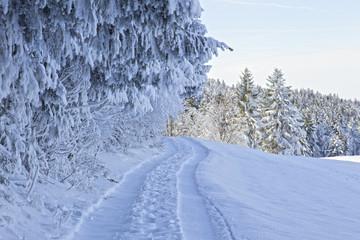 verschneiter weg in den bayrischen alpen