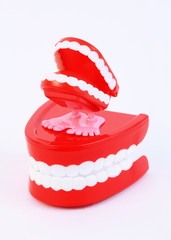 small toy clockwork jaw with white teeth stand on big jaw