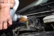 Olio motore auto