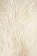 Furry white background