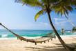 Fototapeten,hängemast,strand,meer,palme