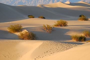 death valley - deserto