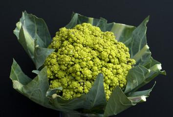 Gruener Blumenkohl, Brassica oleracea