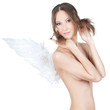 Beautiful elegant angel girl on white background