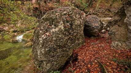 River bank with the big boulder
