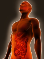 Digestive System Pain