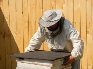 beekeeper checks honey