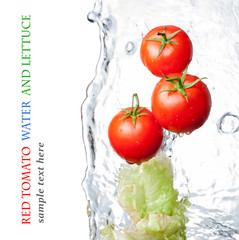 Rinsed tomatoes and lettuce