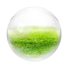 grass in bubble