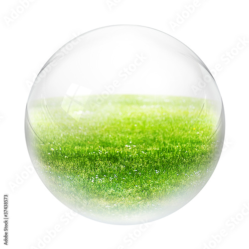 grass in bubble