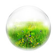 meadow in bubble