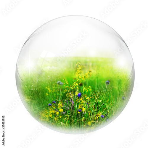 meadow in bubble