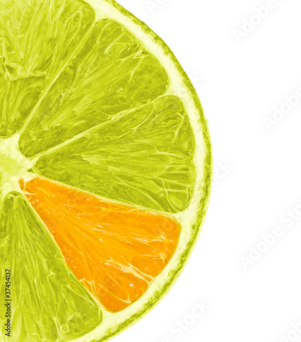 Orange Lemon Slice