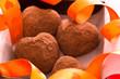 バレンタインデーのチョコレートギフト