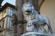 Lion in Piazza della Signoria Florence Italy