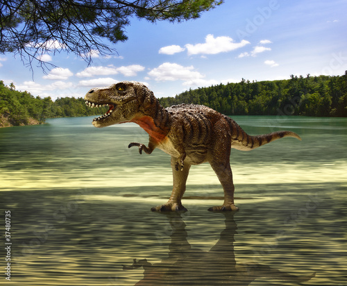 tyrannosaurus looking for food