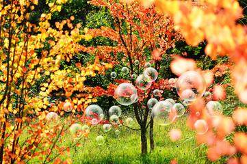summery bubbles