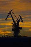 Shipyard cranes in the sunset