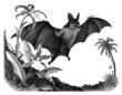 Bat Vampyr 1893