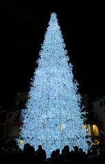 Albero Illuminato - Piazza Portanova - Salerno
