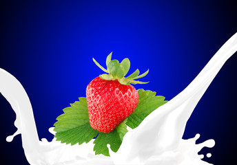 Splashing milk with strawberry