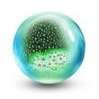 glass ball rain drops