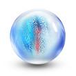 glass ball water