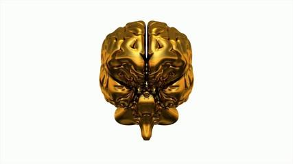 3D Gold Brain 360° Video auf weiß