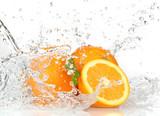 Fototapety Orange fruits with Splashing water