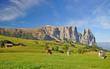 Fototapeten,italien,südtirol,orientierungspunkt,berg