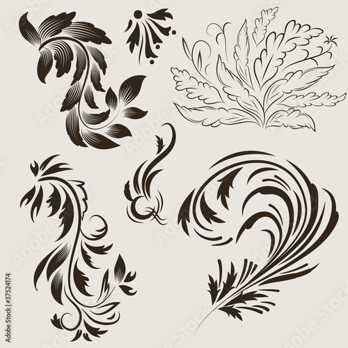 Set abstract floral with leaf