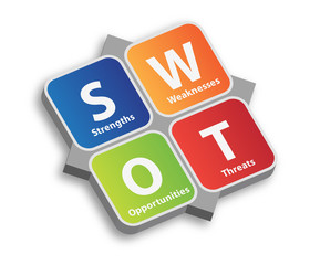 SWOT Risk Analysis