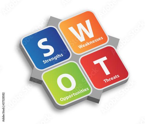 SWOT Risk Analysis