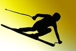 Gold Back Sport Silhouette - Speeding Skier