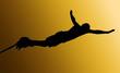 Golden Back Male Bungee Jumper - 37533132