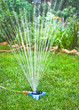 Watering hose and lawn sprinkler - water gardening tools.