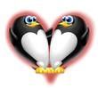 pinguini cuore