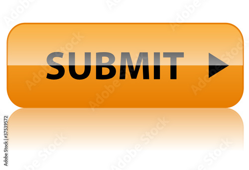"""SUBMIT"" Web Button (click here validate continue next confirm)"