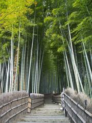 Bambushain © eyetronic