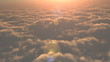 Flight to the sunset