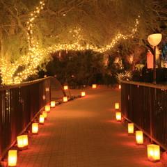 luminarias line a path at night for Christmas season