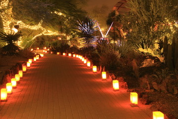 festive luminarias line a garden path at Christmas