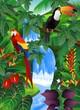 Fototapeten,amazonas,tier,vögel,busch