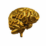 Gold Brain - Halb Links