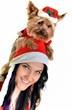 Noël avec le chien, isolé sur fond blanc