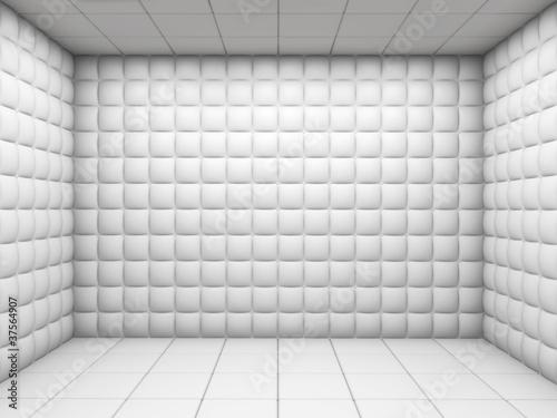 White empty padded room