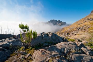 Bergsteigen über den Wolken